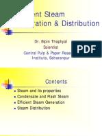 Efficient Steam Generation & Distribution