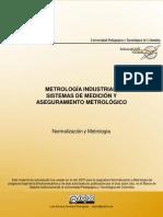 77 Documento Metrologia Historia y Patrones