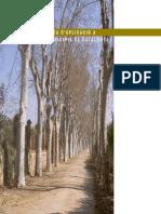 Arbrat a Barcelona - Cap. IV. Proposta d'aplicació a 3 municipis de Catalunya