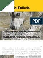 AV21_Polidipsia-Poliuria