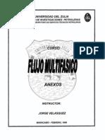 Libro F Correlaciones_Flujo_Multifasico 54pg