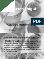 bacterofagii
