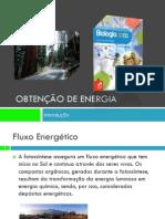 PPT 1 - Obtenção de energia