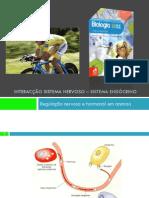 PPT 3 - Regulação nervosa e hormonal nos animais (Sistema Endócrino)