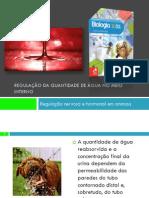 PPT 5 - Regulação nervosa e hormonal nos animais (ADH)