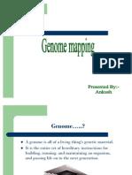 Genome-Mapping.pdf