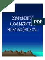 08 Componenetes Alcalinizantes de La CAl, G. Coloma