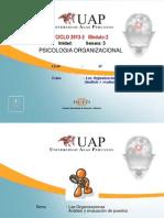 Psicología Organizacional 3
