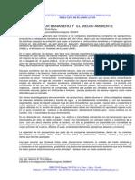 Artículo El sector bananero y el Medio Ambiente mayo2009.pdf