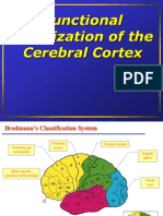 Functional Localization of the Cerebral Cortex