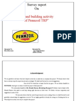 "Survey report On  ""Brand building activity of Pennzoil TRP""  by Ajay Singh Rathore"