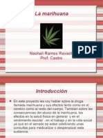 Presentacion Power Point.odp