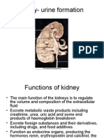 Function of Kidney