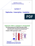Molecular Biology Notes 1.pdf