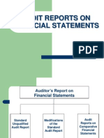 audit report.pdf