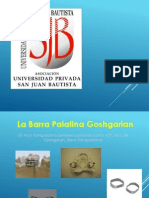Barra Palatina g