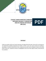 Colegio Maria Mercedes Carranza Plan de Estudios Final