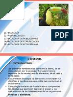 Ecologia Eya 2013