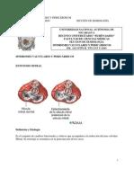 Sindromes Valvulares y Pericardicos[1]