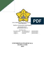 Yen Yen Hermita Sidauruk_Universitas Syiah Kuala_PKMK.pdf