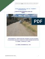 Informe Perfil de Tambo[1]