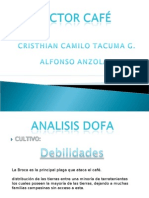 Expo Analisis Dofa Cafe
