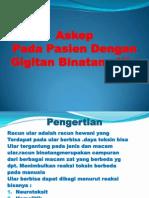 Askep Pada Pasien Dengan Gigitan.pptx