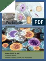 Portafolio Micro