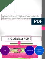 Explique la técnica PCR (Reacción en cadena