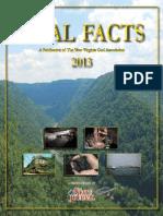 Coalfacts Online 2013