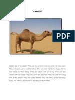 CAMELS.docx