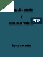 Anestesias Nerviosas y Sinoviales Del Caballo