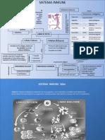 inmunidad-110724105835-phpapp01(1)