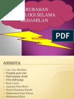 PERUBHN FISIO DLM KEHMLAN.pptx