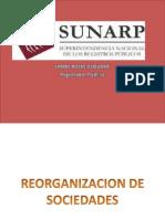 Reorganizacion de Sociedades j Rojas
