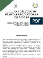 DISEÑO CALCULOS DE UNA PLANTA DE BIOGAS