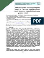 confrontation des souches pathogènes de Fusarium