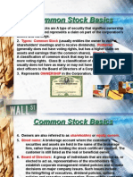 13020045 Common Stock Basics