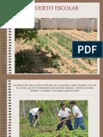 Presentacion Huerto Escolar (1).ppt