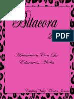 Bitacora ilustrator.pdf