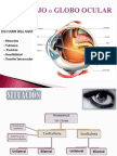 Oftalmologia Semiologia Grupo 7