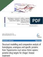 Modelagem estrutural e análise comparativa de proteínas homólogos