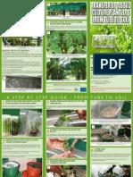 Transfer of Tissue Culture Plantlets.pdf