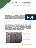 Produccion Industrial y Aplicaciones de Nanofibras de Carbono