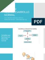 Resumen Neurodesarrollo Normal