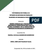ENSAYO_DISEÑO CURRICULAR Y PROYECTO DE DESARROLLO_NATALIA_RGUEZ_RGUEZ