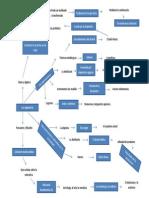Mapa Conceptual Los Alquimistas