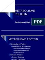 Metabolisme Protein+as.amino