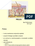 Pielea.ppt