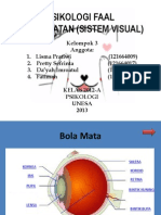 Psikologi Faal-Sistem Visual.pptx